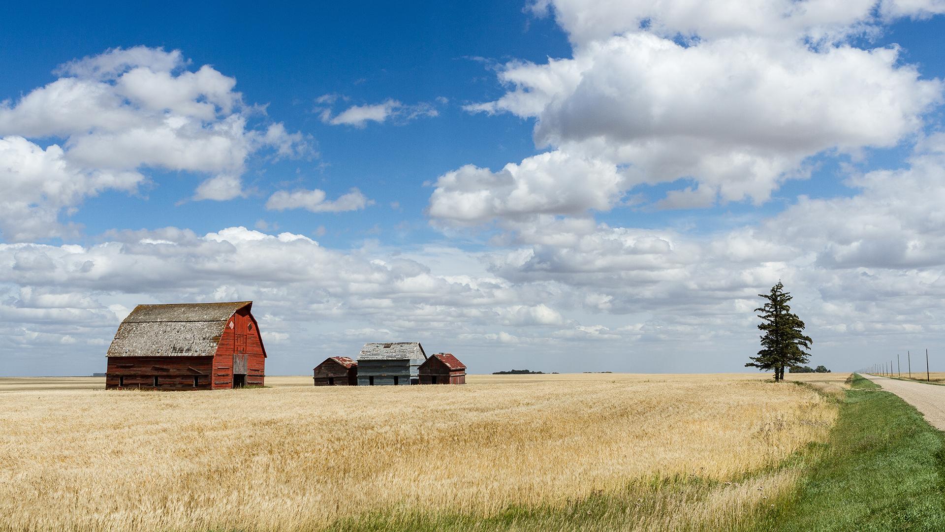 RTDNA Canada 2021 Prairie Region Winners
